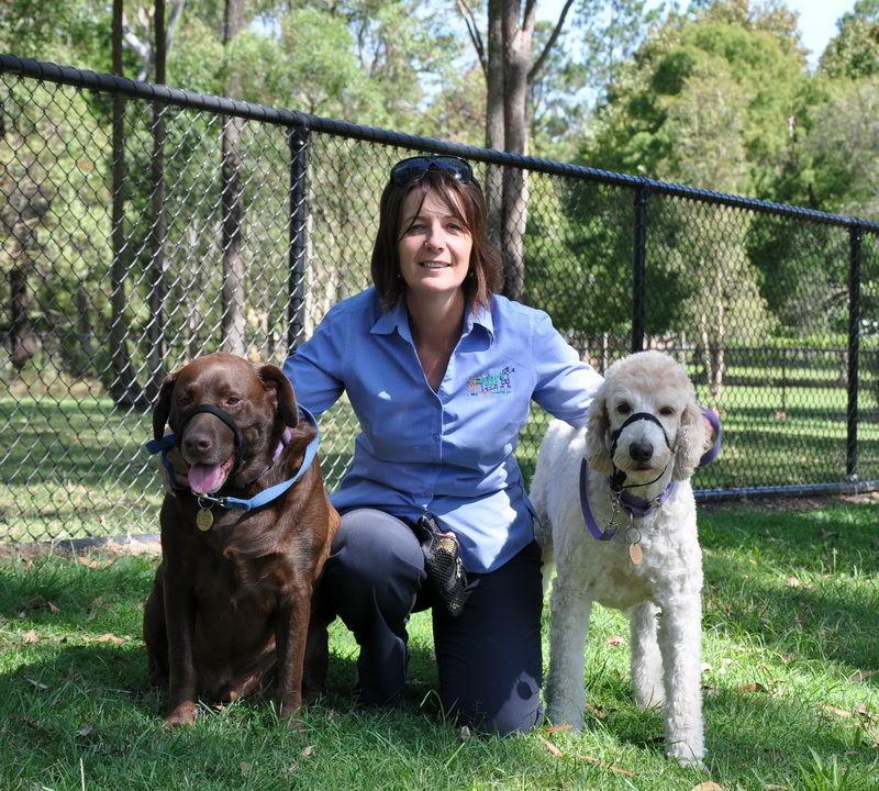 about us dog training